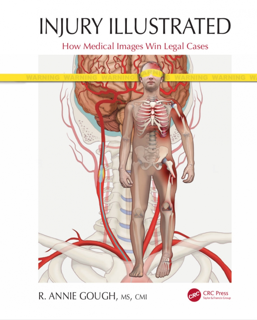 Injury Illustrated Book Cover